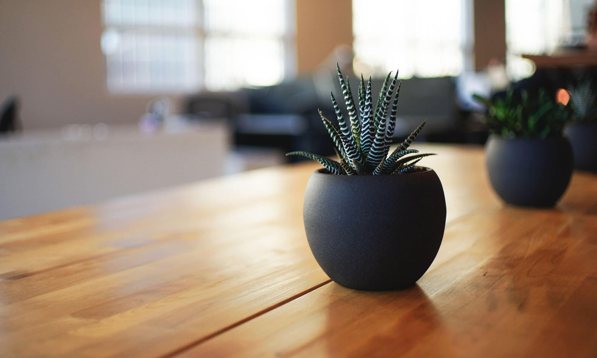 Фирма ЛЮКС. Лучшая мебель для жизни от лучших производителей